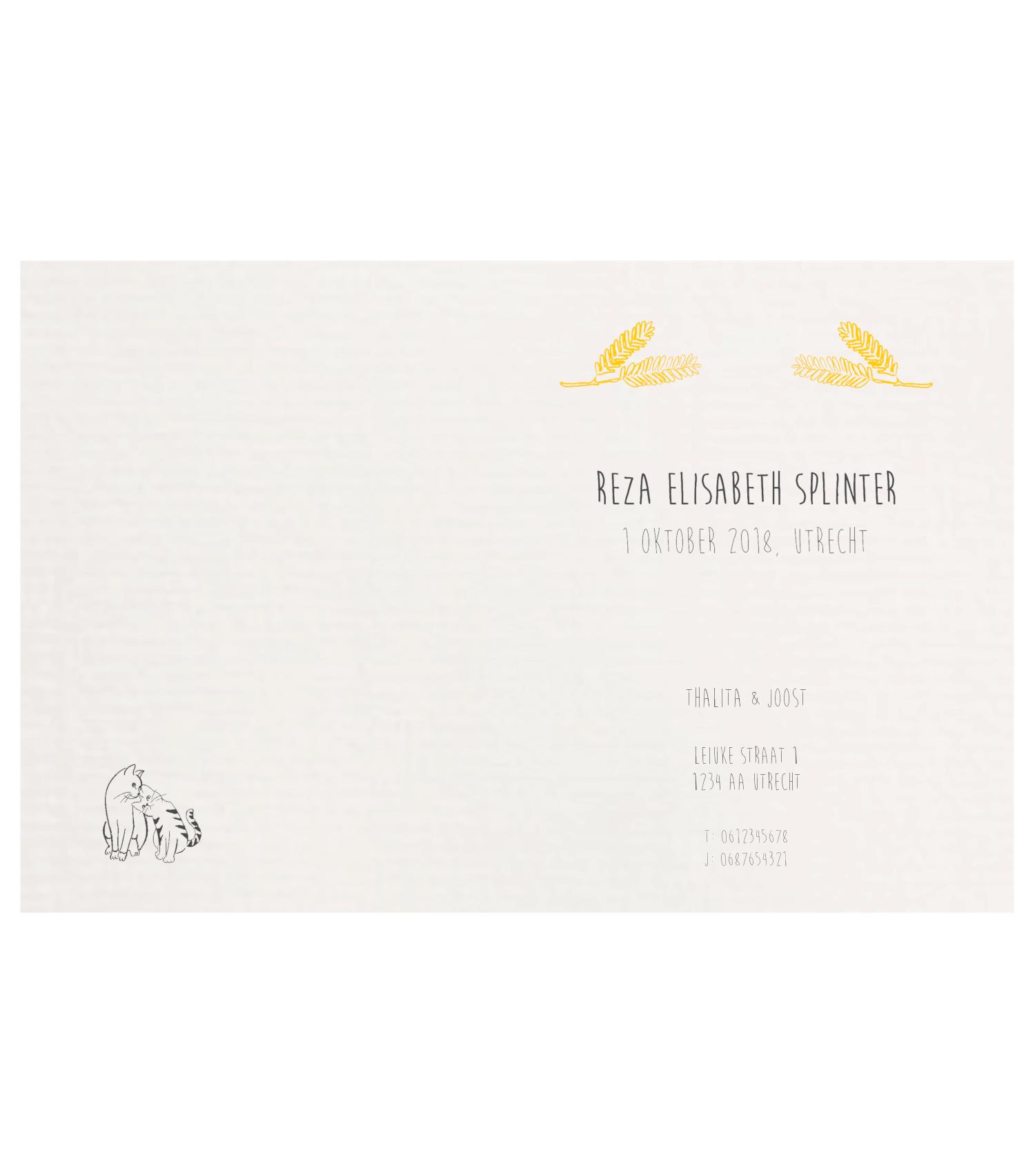 geboortekaartje Reza binnenkant