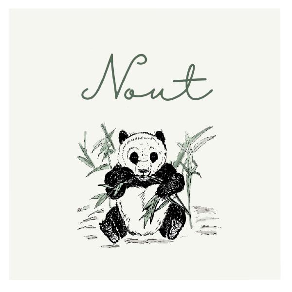 Geboortekaartje pandabeer achterkant