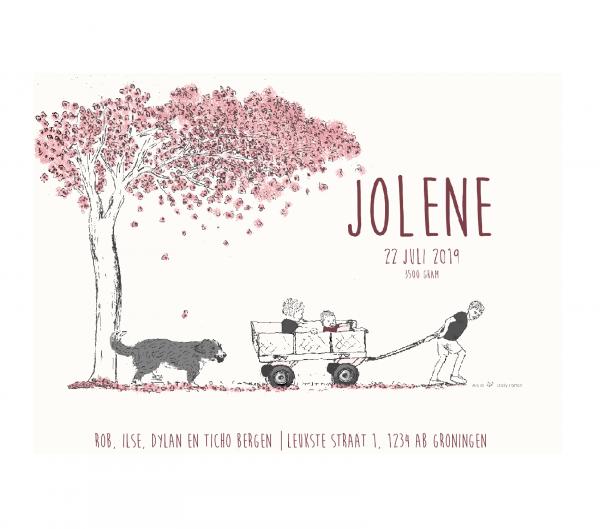 geboortekaartje persoonlijk Jolene