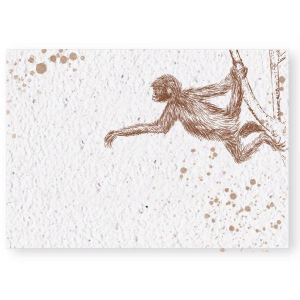 groeikaart aapje