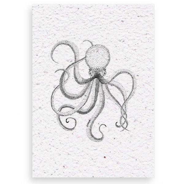 groeikaart octopus