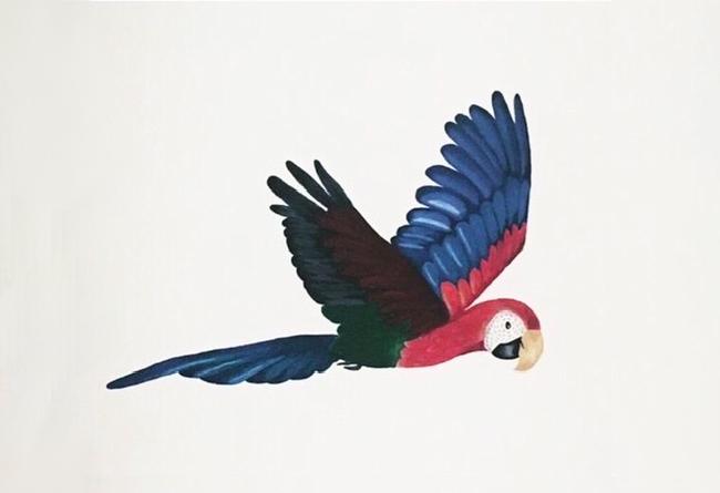 Ontwerp muurschildering papegaai