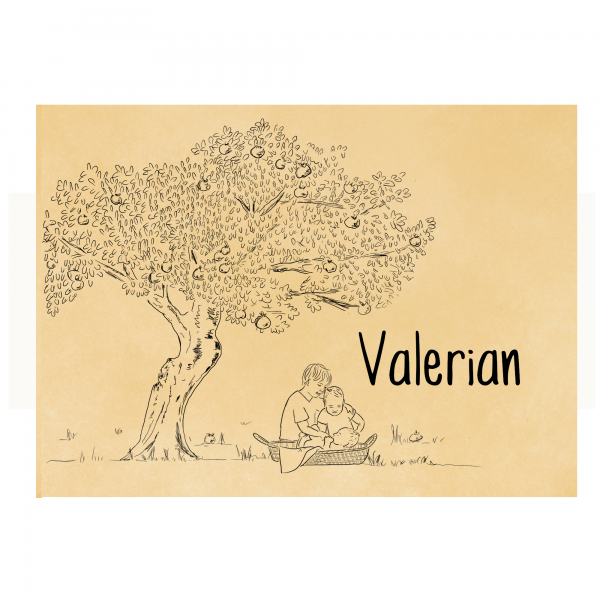 Duurzaam Geboortekaartje Valerian voorkant