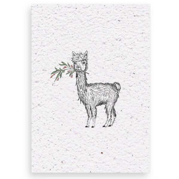 Kerstkaart op groeipapier Alpaca met takje